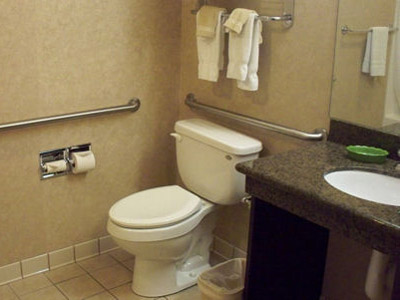 Handrails in Bathroom